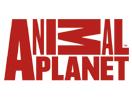 Animal Planet Italia