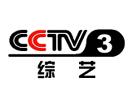 CCTV 3 Culture