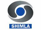 DD Shimla
