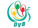 DVB Democratic Voice of Burma
