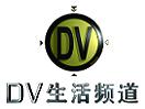 DV Channel