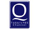 WDCQ-TV PBS Bay City