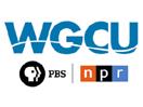 WGCU-TV PBS Fort Myers